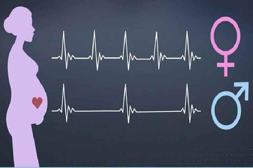 Tốc độ của nhịp tim – Dấu hiệu mang thai bé trai