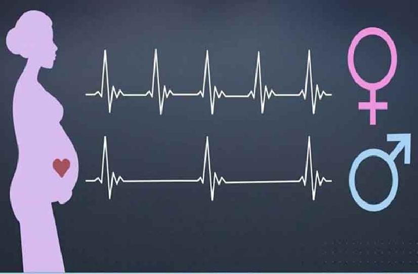 Nhịp tim tăng - Dấu hiệu mang thai